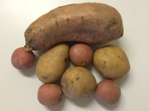 different kinds of potatoes