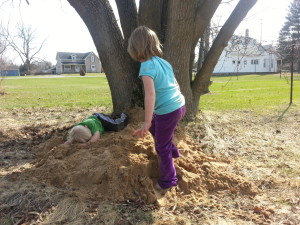 extra sand by tree for small sandbox
