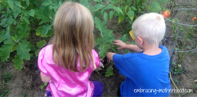 The Importance of Growing Up with a Garden