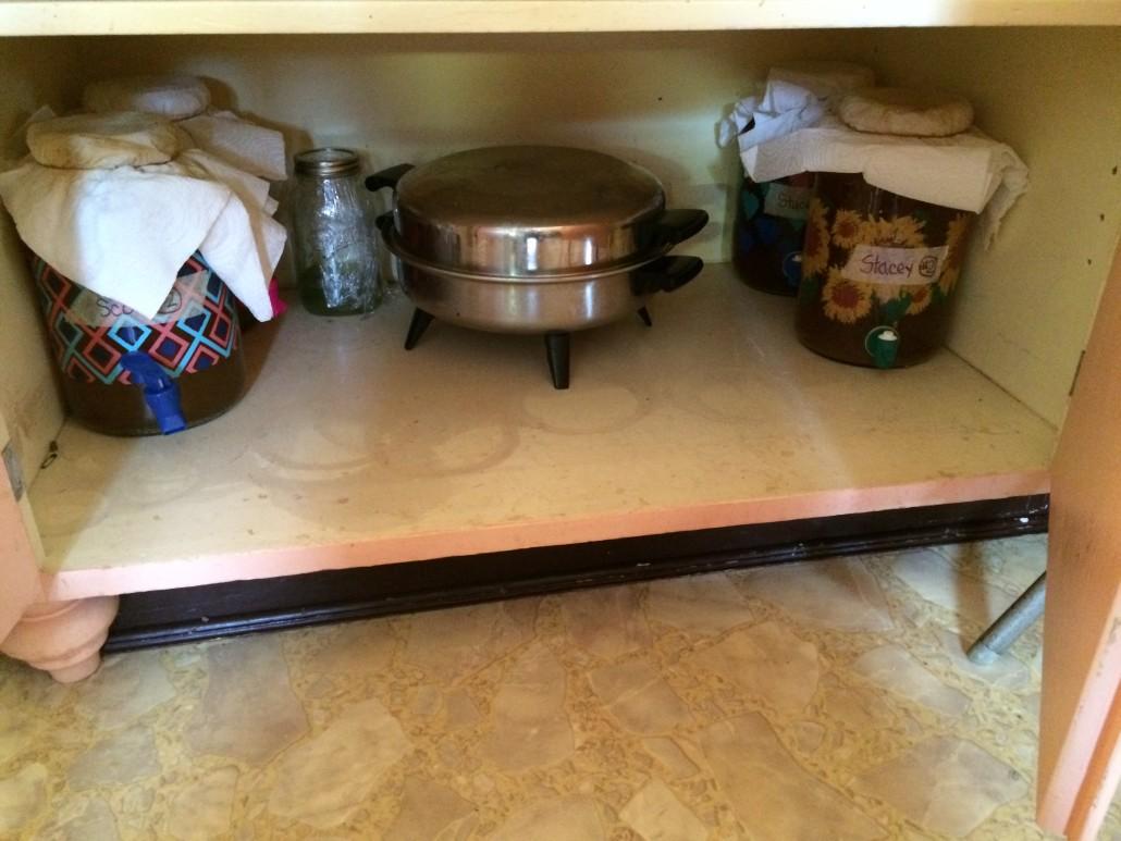 four kombucha tea jars ready for fermentation in a cupboard