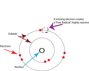 This Free Radical is Missing an Electron Which Makes it Highly Reactive