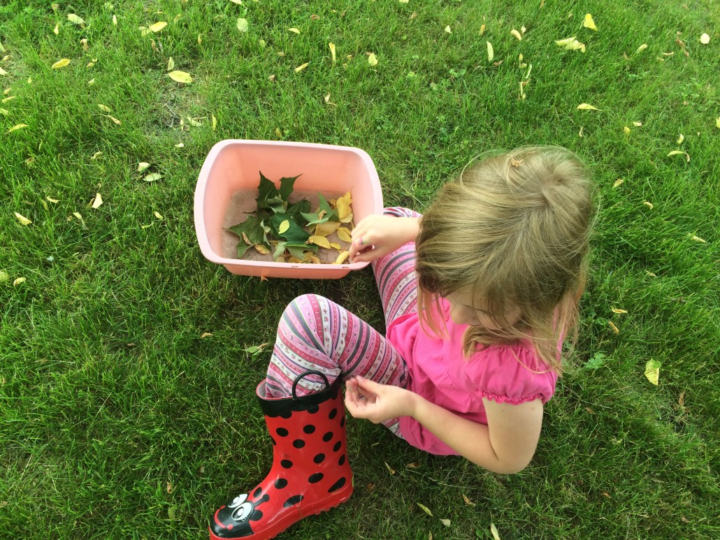 Ruby Collecting Leaves