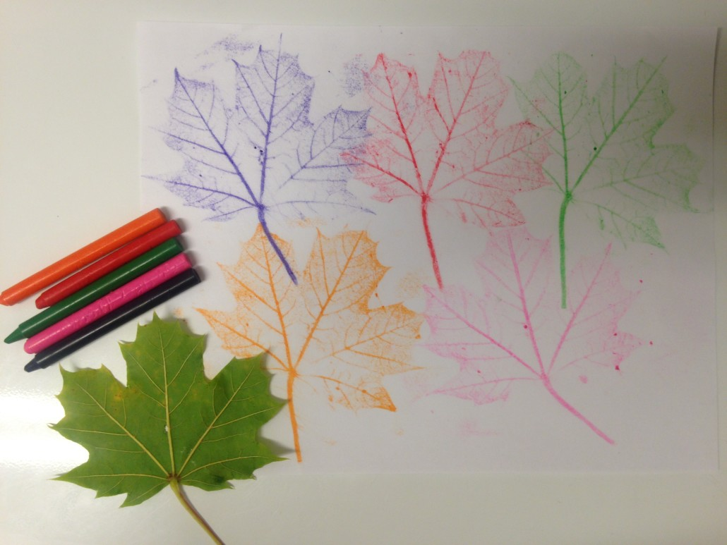 Leaf Crayon Rubbings