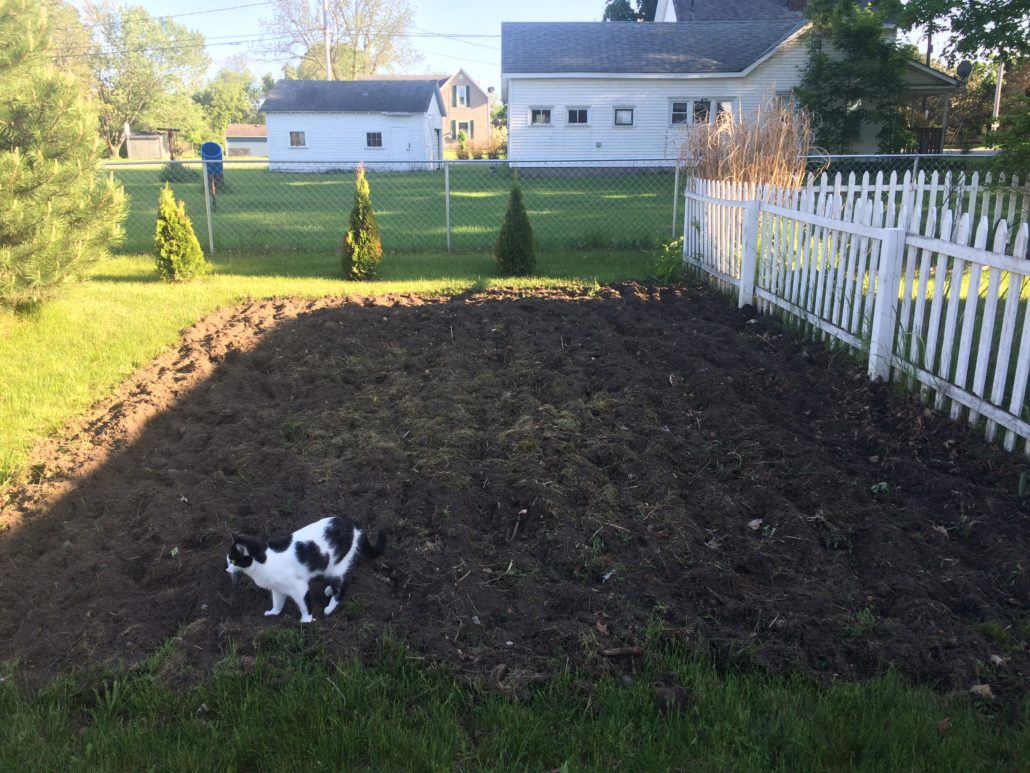Preparing the Soil for the Garden