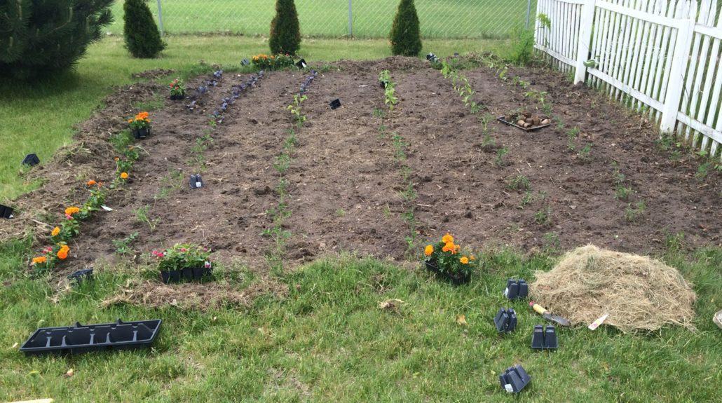 Planting the Garden