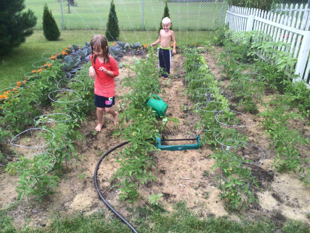 Last Year's Garden Embracing Motherhood