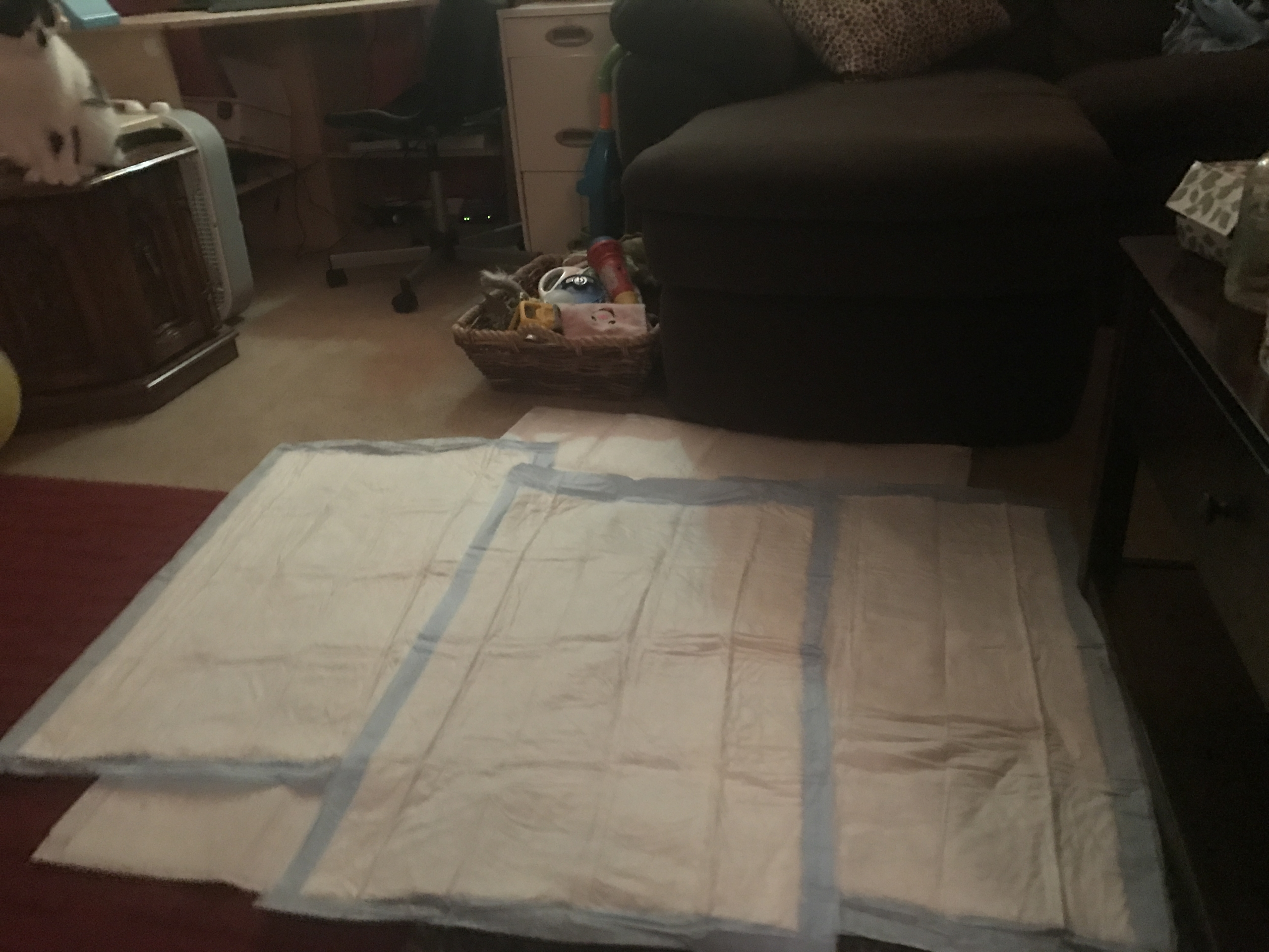 Laying out Chux Pads