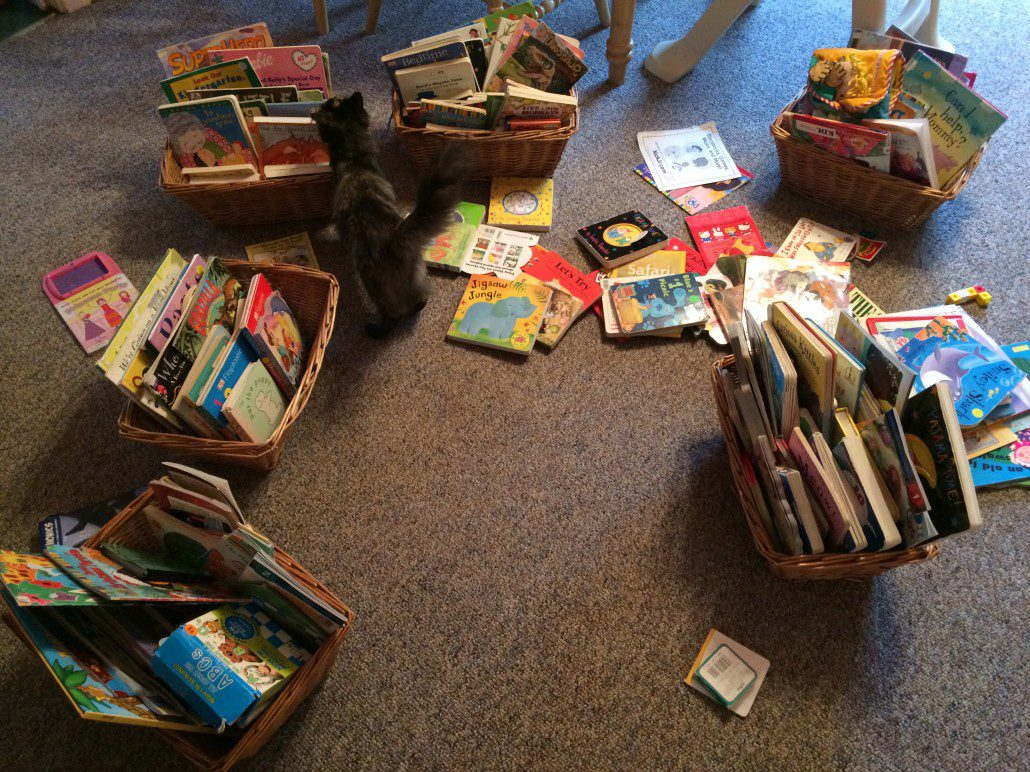 Organizing My Books