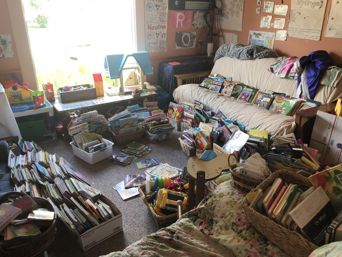 Organizing All of the Books in Our House