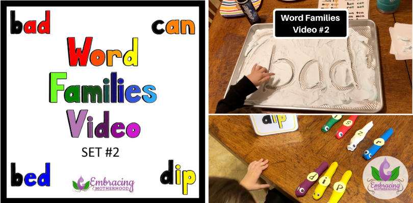 Word Families Video Set #2